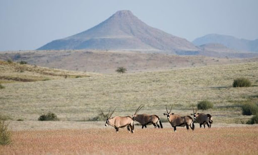 Namibia - Africa's tourism success story built on nature conservation (National Geographic)