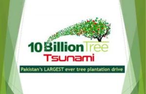 Environmental sustainability via tourism